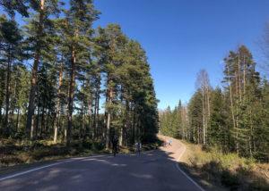 8 июня 2019    Велошенген Виролахти - Hujakkala по полям