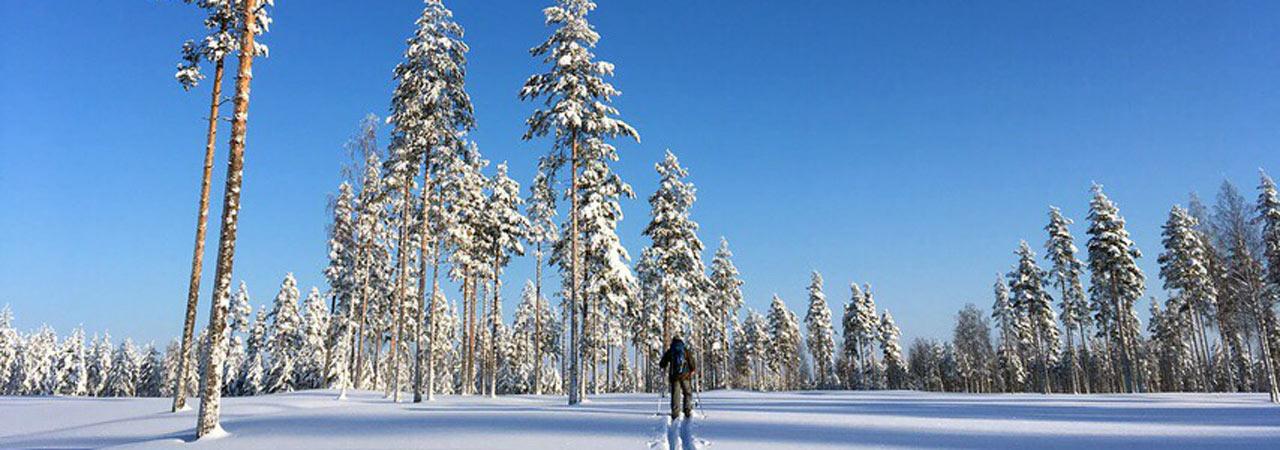 Иматра: беговые лыжи + йога