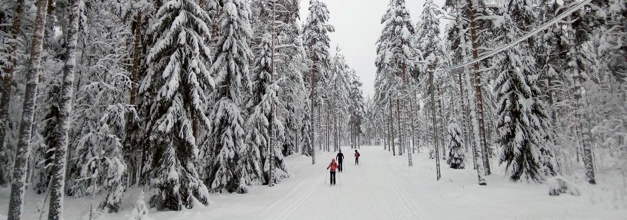 Миккели: беговые лыжи + Йога